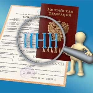 Анализ вопросов, связанных с ИНН — Андрей Степанов