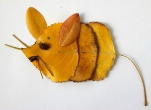 0rickro9fEA 300x219 - Осенние поделки: аппликации из осенних листьев. Коллаж из осенних листьев