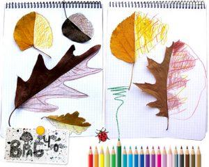 leaf52 300x240 - Осенние поделки: аппликации из осенних листьев. Коллаж из осенних листьев