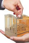 Новые правила выплаты алиментов