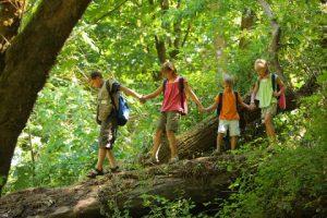 bigstock Kids in wilderness walking acr 14086424 e1335041919457 300x200 - Правила этикета для детей в любых жизненных ситуациях