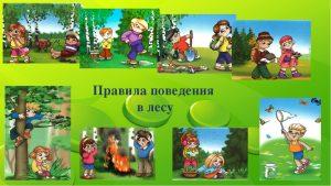 pravila povedeniya v lesu dlya detey 300x169 - Правила этикета для детей в любых жизненных ситуациях