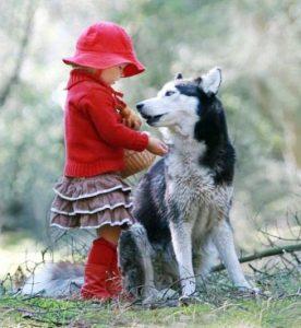 """volf 1 276x300 - """"Ксюша, это волк!"""" Как защитить детей от опасных взрослых?"""