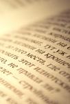 Филолог Анна ШАДСКАЯ: «Человек без воображения не видит оттенков языка»