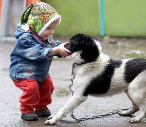 1193185865 8 - Ребёнок жестоко обращается с домашними животными. Что делать?