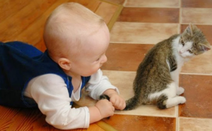 image031 1 - Ребёнок жестоко обращается с домашними животными. Что делать?