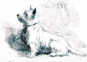 Басня Собака