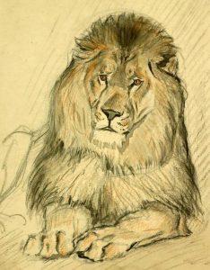 Басня Лев и человек