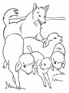 Басня Овцы и собаки