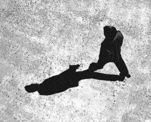 Басня Тень и человек
