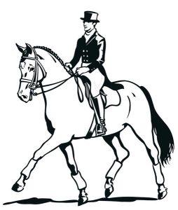 Басня Конь и всадник