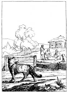 Басня Волк и пастухи