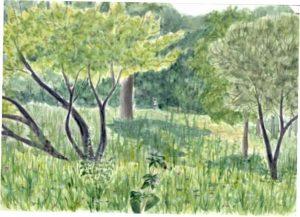 Басня Дерево
