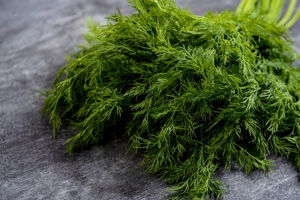 picture of green dill on grey table - Архангельский салат из трески