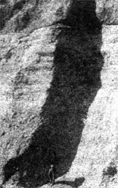 viland 14 2 - Камни и кости