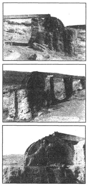 viland 36 - Камни и кости