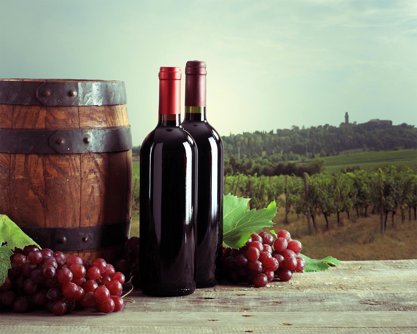 vino 1 - Вино