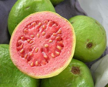 guava_foto